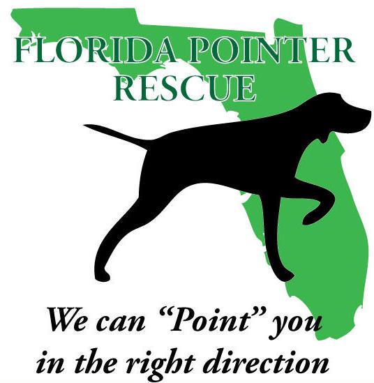 Florida Pointer Rescue