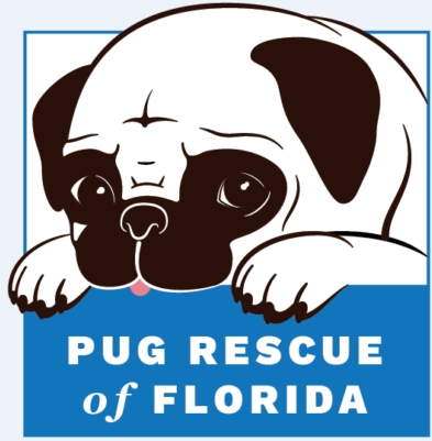 Pug Rescue of Florida