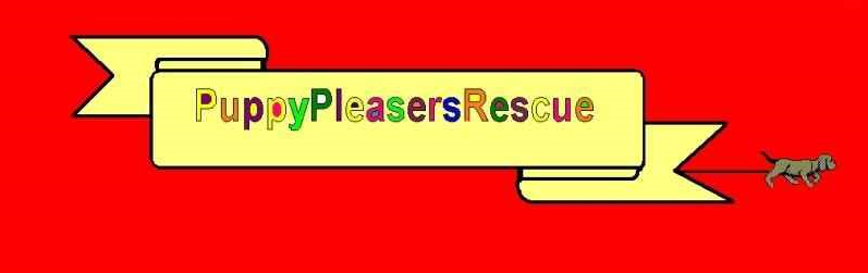 Puppy Pleasers Rescue