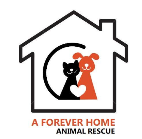 A Forever Home Animal Rescue